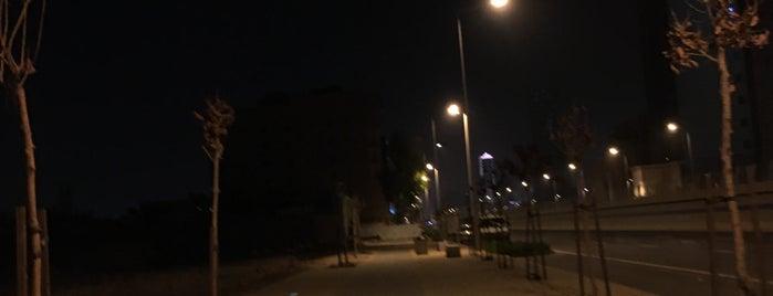 Al Sahafah Walking Area is one of Riyadh Walk.