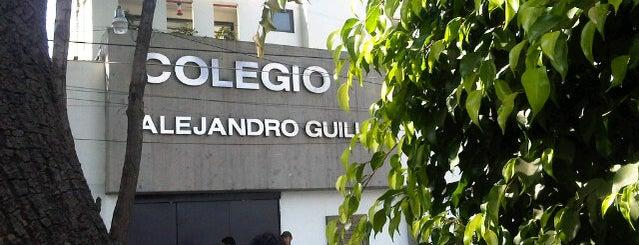 Colegio Alejandro Guillot is one of Locais curtidos por Francisco.