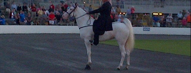 Tennessee Walking Horse National Celebration is one of 1000 Places to See Before You Die - Midwest.