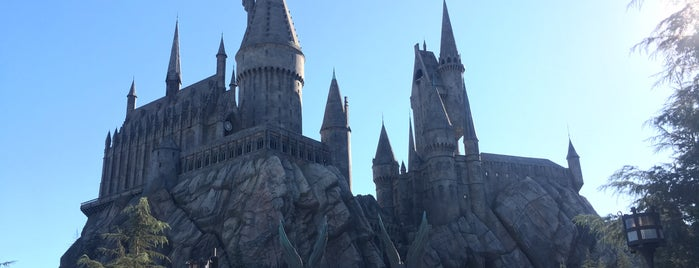 Harry Potter and the Forbidden Journey is one of Lieux qui ont plu à Adri.