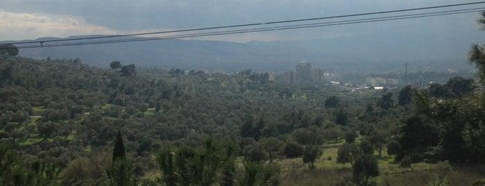 Vebaş is one of İzmir'de gidilmesi gereken yerler.