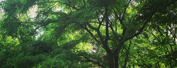 北海道大学 植物園 is one of Sapporo.