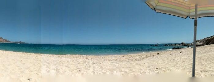 Playa Los Arbolitos is one of Gabriela : понравившиеся места.