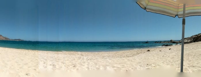Playa Los Arbolitos is one of Lieux qui ont plu à Karla.