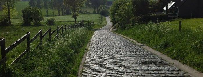 Paterberg is one of Belgium / Events / Ronde van Vlaanderen 2019.
