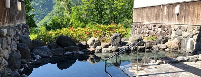 ホテル 森の風 立山 is one of 訪れた温泉施設.
