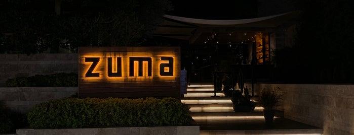 Zuma Bodrum is one of Turkey.