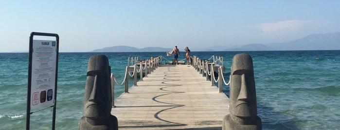 7800 Çeşme Beach is one of Orte, die Zep gefallen.