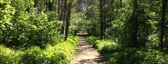 Тольяттинский лес is one of Tempat yang Disukai Екатерина.