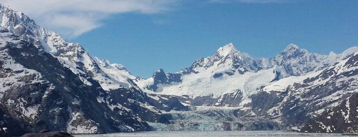 Glacier Bay, AK is one of สถานที่ที่ Hank ถูกใจ.