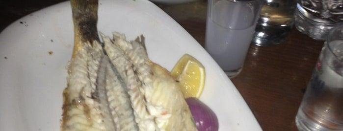 Galata Junior Restaurant is one of Orte, die Suheyla gefallen.