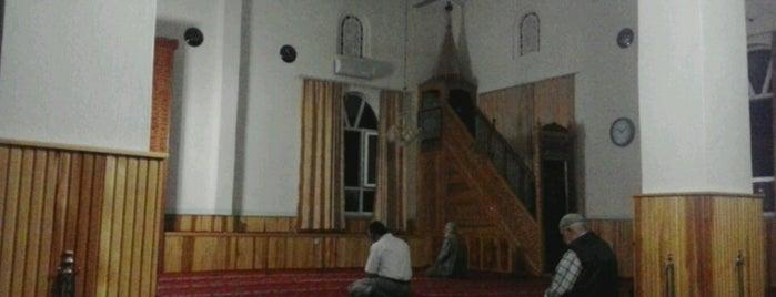 Fatih Camii is one of Konya Karatay Mescit ve Camileri.