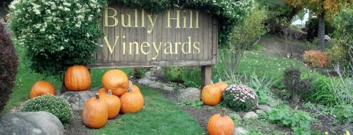 Bully Hill Vineyards is one of Finger Lakes Wine Trail & Some.