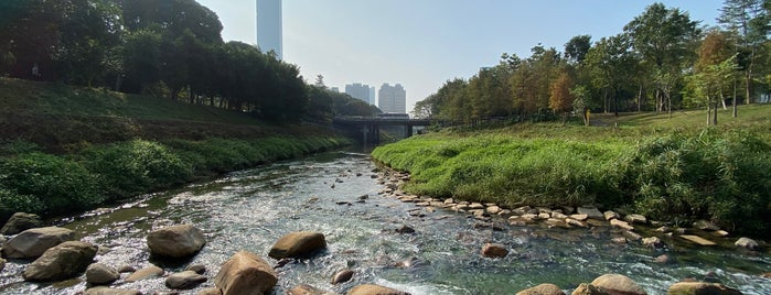 Central Park is one of Shenzhen.