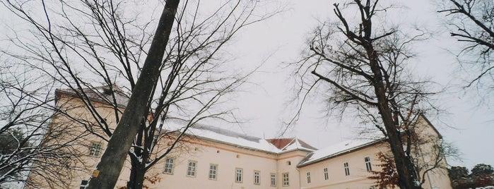 Ужгородський замок / Uzhhorod Castle is one of Lieux qui ont plu à Agatha.