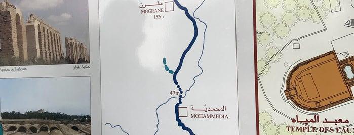 Steigenberger Kantaoui Bay is one of otz.