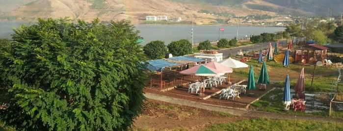 Dodo Sahil Cafe & Bistro is one of Orte, die Oğuzhan gefallen.