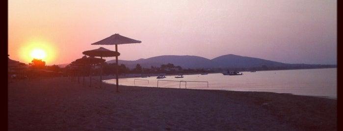 Gerakini Beach is one of Orte, die Figen gefallen.