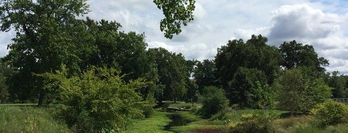 Forest Park is one of Lieux qui ont plu à Kaz.