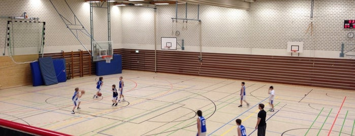 AvDHS Sporthalle Lohring is one of Erdemさんのお気に入りスポット.