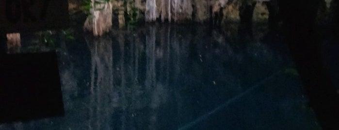 Cenote Yokdzonot is one of Travel.