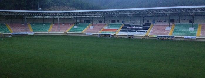 Alanya Bahçeşehir Okulları Stadyumu is one of Yunus'un Beğendiği Mekanlar.
