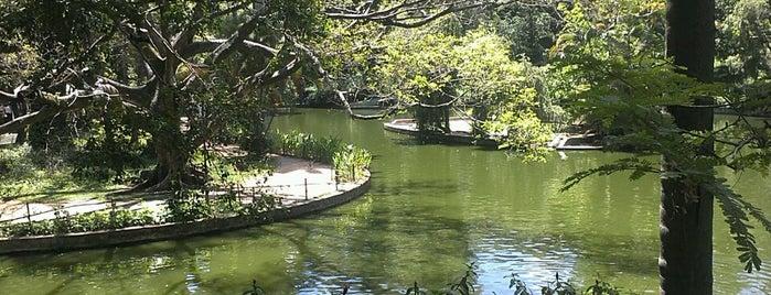 Parque Municipal Américo Renné Giannetti is one of Ótimos parques e passeios de Belo Horizonte.