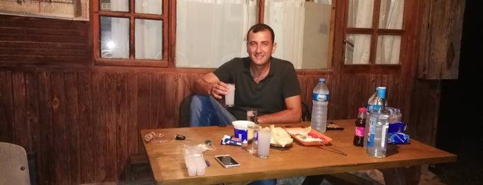 Binkılıç Ayazma is one of Locais curtidos por Niyazi.