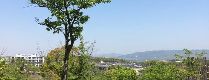 木津川台公園 is one of Shigeoさんのお気に入りスポット.