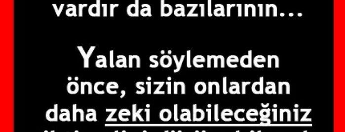 Şahin Rezidance is one of Guzel Sozler.