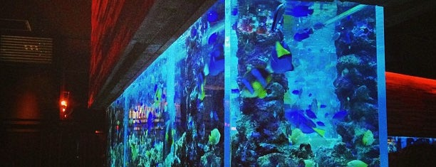 Aquarium Dining LIME is one of food tokyo.