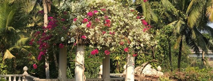 Palacio de Deao is one of CN Goa 50.