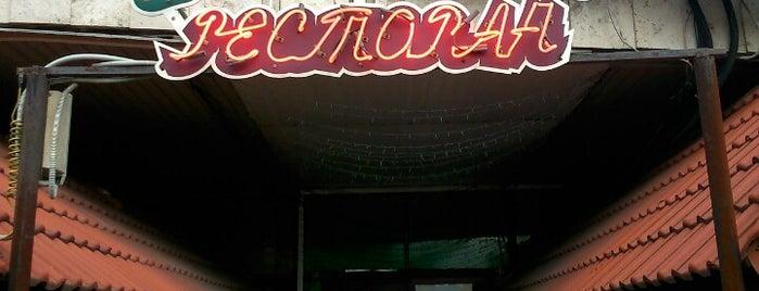 "Ресторан ""Тимур"" is one of Tempat yang Disukai Pavel."