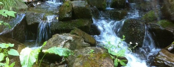 Черные горы is one of Anjie: сохраненные места.