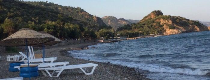 Keçi Camping is one of Kamp Alanları.