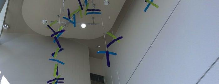 John Theurer Cancer Center is one of Tempat yang Disukai Denise D..