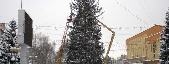 Главная Новогодняя Елка 2012/13/14 is one of Советы, подсказки.
