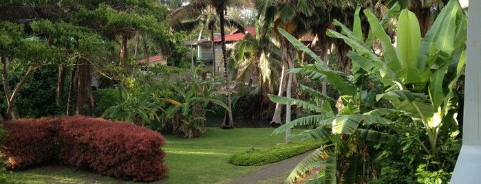 Moloa'a Beach is one of Places to Visit: Kauai, HI.