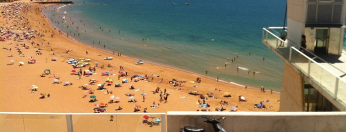 Praia do Peneco is one of Algarve.
