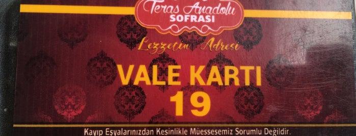Teras Anadolu Sofrası is one of Mekanlar.