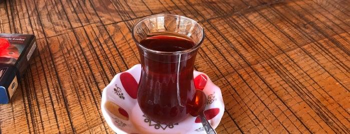 Çilek diyarı Ekindere köyü is one of Tatil.