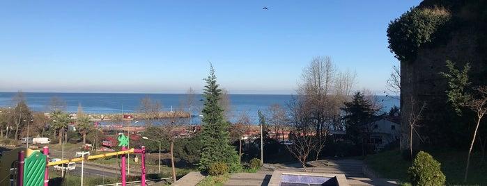 Trabzon Eczacı Odası is one of Tempat yang Disukai Dilek.