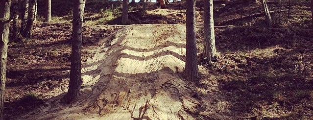 SUO Bike Park is one of 🏂🏄🏇🚴.