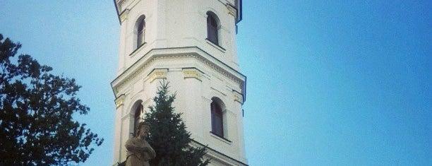 Собор Вознесения Пресвятой Девы Марии (Францисканский костёл) is one of Пинск.