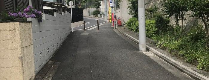 Nakameguro is one of Tokyo v2.