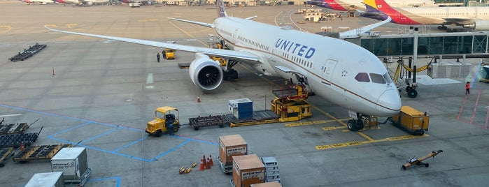 United Airlines UA892 (ICN-SFO) is one of Travel.