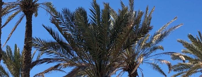 بحر أملج   الدقم is one of Queen: сохраненные места.
