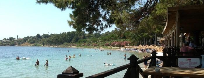 Ömer Holiday Resort is one of Locais curtidos por Kadir.