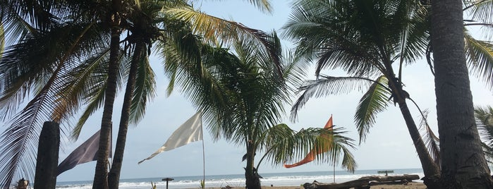 LocosCocos - A Barefoot Beach Bar is one of Restaurant 2.