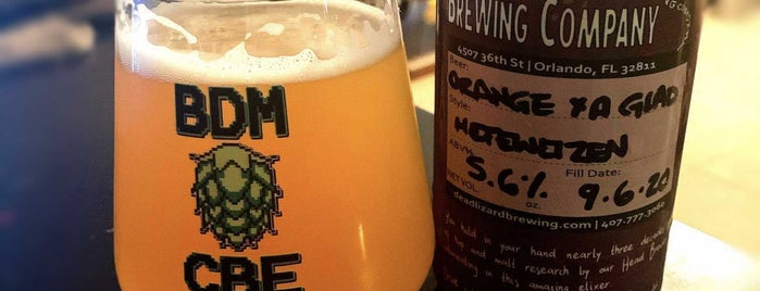 Dead Lizard Brewing Company is one of Orlando Breweries.